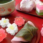 桜餅と柏餅はどんな違いがあるの?