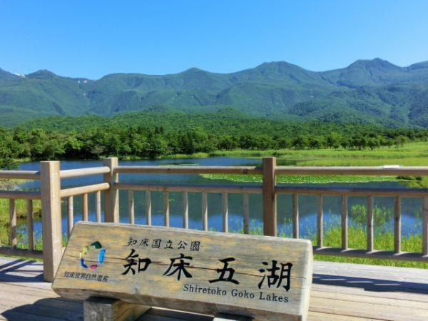 大自然を思いっきり満喫できる知床のおすすめ観光スポット